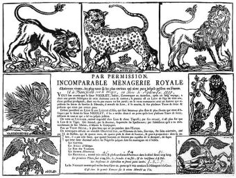 Menagerie Royale