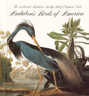Book cover for Audubon's Birds of America