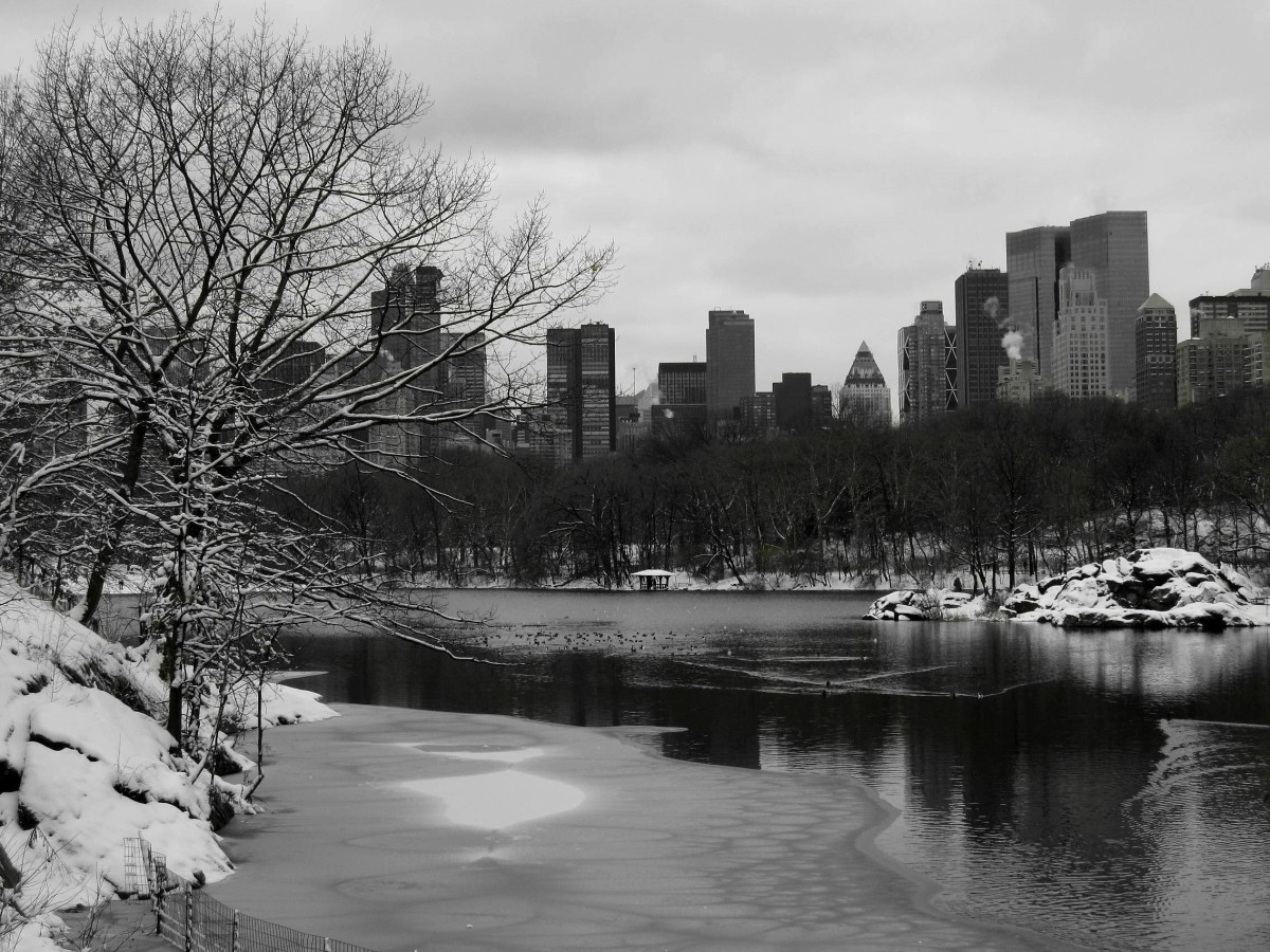 Central Park, Christmas, New York