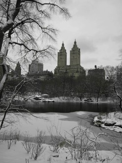 Central Park, The Eldorado, NYC
