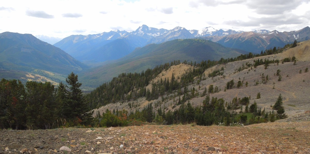 View on Spruce Meadows, Chilcotin Mountains, Canada