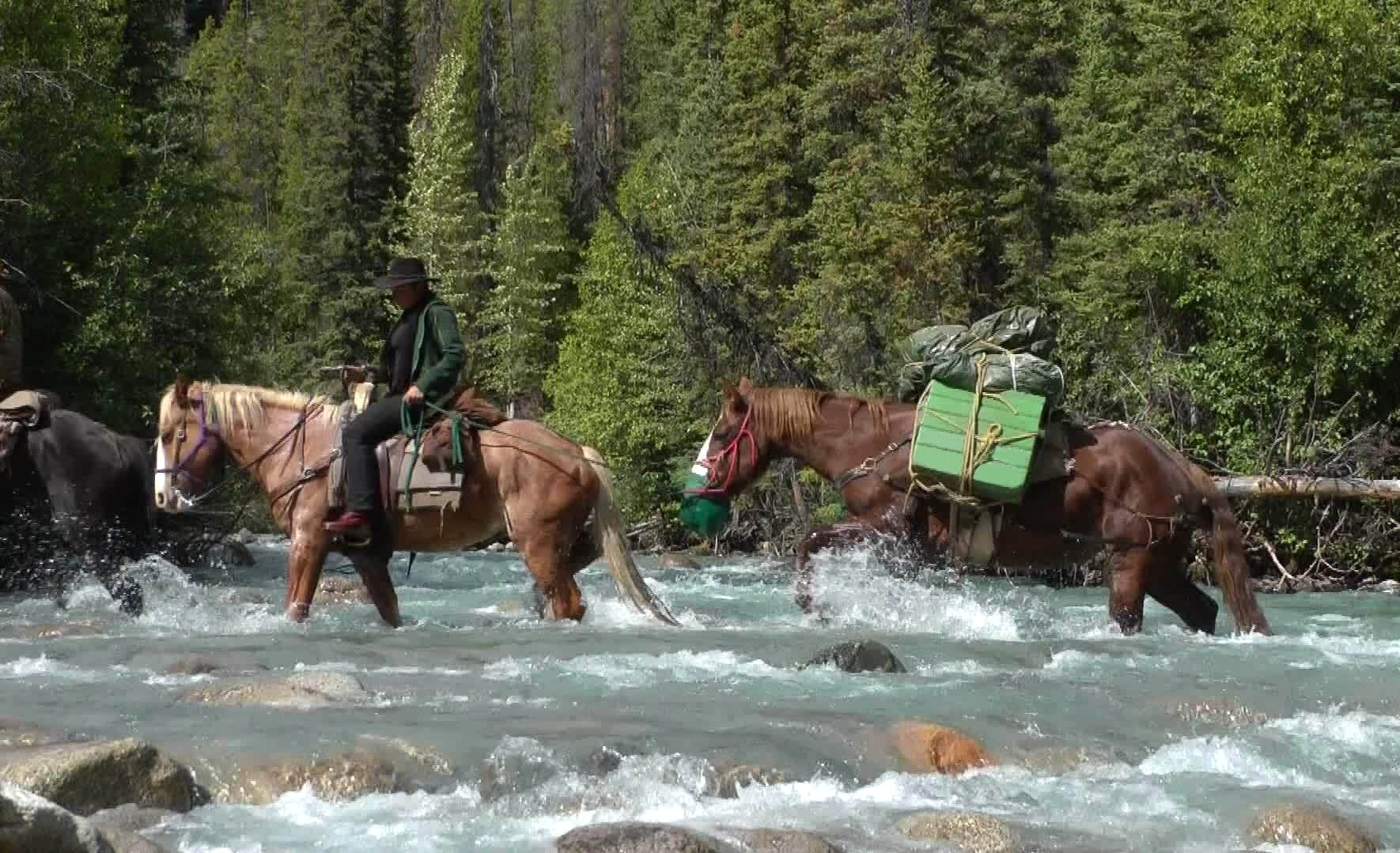 Riding over creeks, BC, Canada