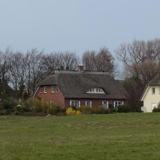 Thatched cottages, Fishland-Darss-Zingst