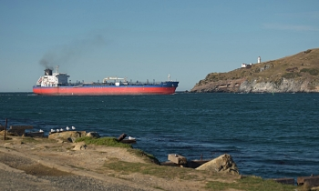 Cargo ship, Otago Harbor